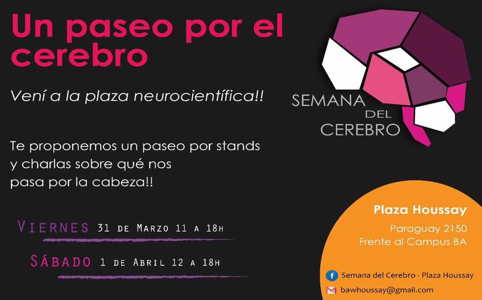 Un paseo por el cerebro - Semana del Cerebro 2017